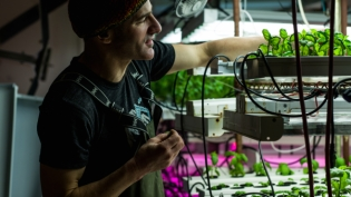 Alaska Sprouts
